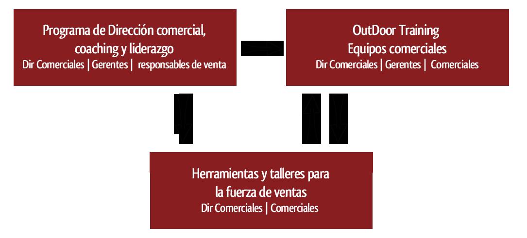programa de direccon comercial y coaching